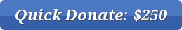 button_quick-donate--4-